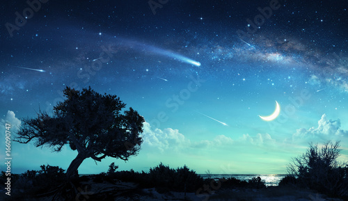 Canvas Prints Night Shooting Stars In Fantasy Landscape At Night