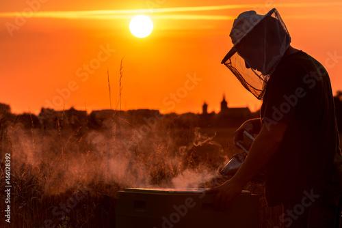 Imker bei der Arbeit im Sonnenuntergang - Silhouette einer Stadt im Hintergrund Canvas Print