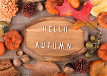 Hello Autumn Plaque With Fall Decorations