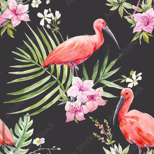 tropikalne-ptaki