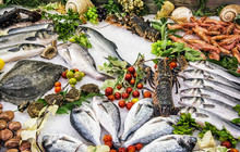 Fresh Raw Seafoods On Counter ...