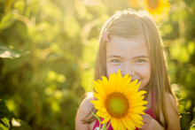 Beauty Little Girl With Sunflower Enjoying Nature And Laughing On Summer Sunflower Field. Sunflare, Sunbeams, Glow Sun