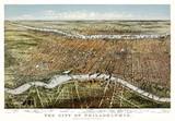 Philadelphia, Pennsylvania, Old aerial view. Currier & Yves, New York, 1875 - 166228112
