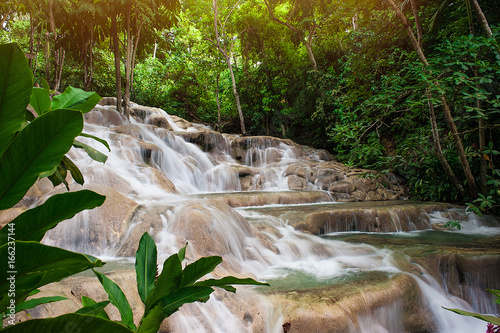 Jamaica Water Fall Canvas Print
