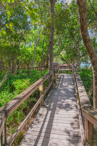 Foto op Canvas Weg in bos Seashore View in the Keys. Exposure done in this beautiful island of the Keys, USA..