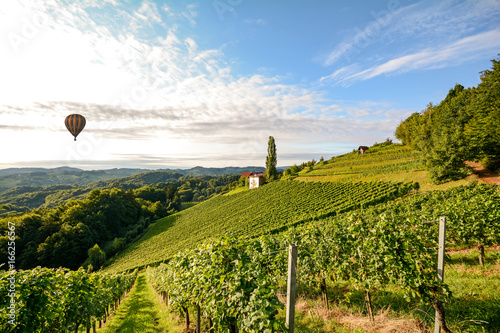 Poster de jardin Montgolfière / Dirigeable Vineyards with hot air balloon near a winery before harvest in the tuscany wine growing area, Italy Europe
