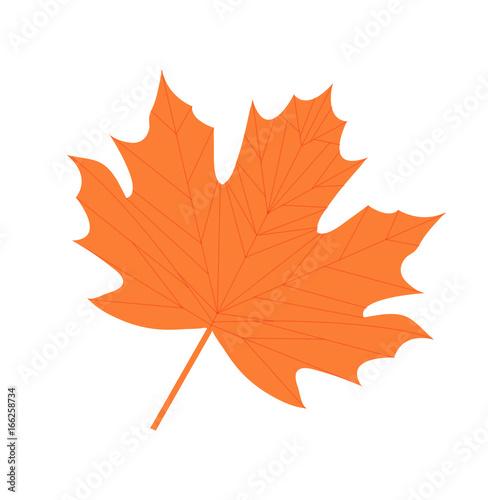 Fototapety, obrazy: Maple leaf icon, flat, cartoon style. Isolated on white background. Vector illustration
