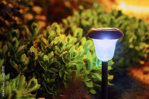 Aluminium Prints Garden Small Garden Light, Lanterns In Flower Bed. Decorative Solar Powered