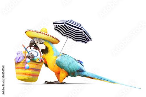 Staande foto Papegaai Papagei als Paradiesvogel am Strand freigestellt - Urlaub Konzept