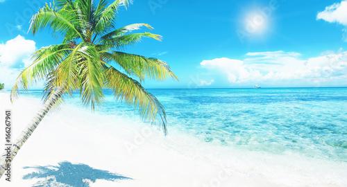 Foto op Plexiglas Caraïben Schöner Strand im Paradies