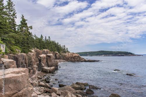 Fotografie, Obraz  Acadia National Park - Ocean Path