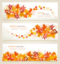 Set Of Abstract Autumn Banners...