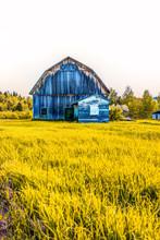 Blue Painted Old Vintage Barn ...