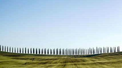 Obraz Tuscany landscape
