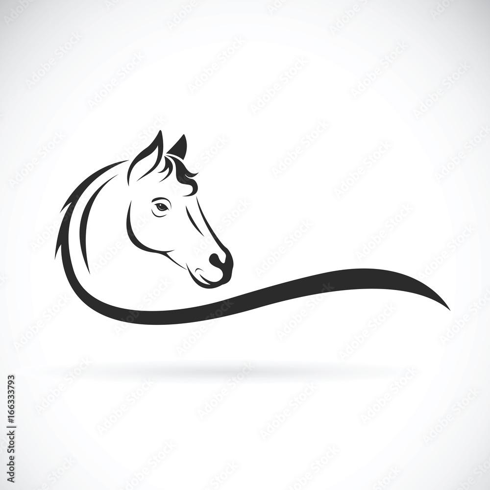 Wektor głowa konia na białym tle. Dzikie zwierze <span>plik: #166333793 | autor: yod77</span>