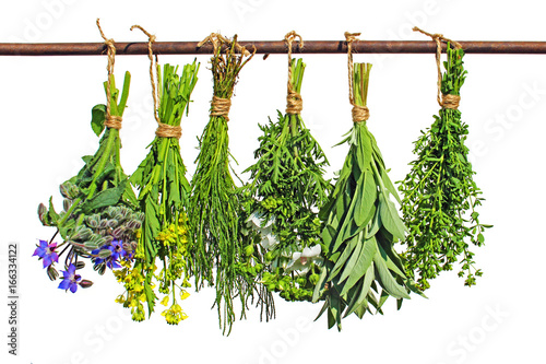 In de dag Verse groenten kraeuter hängen auf stange