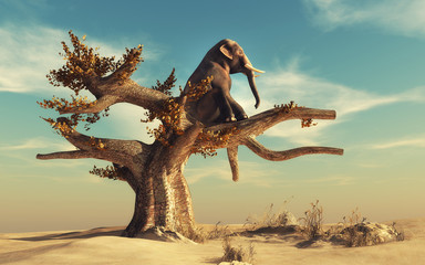 Elephant in a dry tree