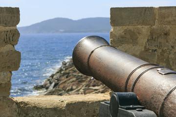 FototapetaOld war iron canon in Sardinia