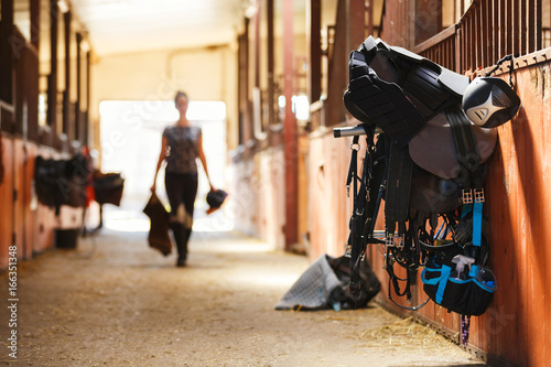 Fotografie, Tablou Horse riding equipment