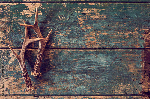 Tablou Canvas Seasonal stag antlers on rustic timber background