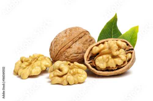 Poster Graine, aromate Walnuts with leaves