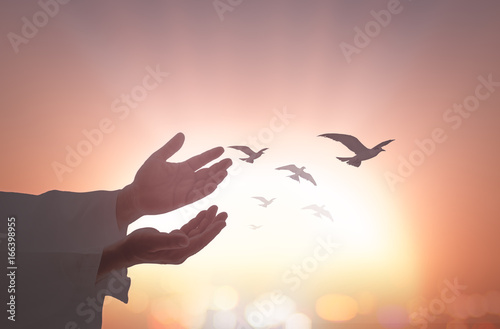 International migrants day concept: Silhouette islam man open two empty hands with palms up and birds flying over autumn sunset background Canvas Print
