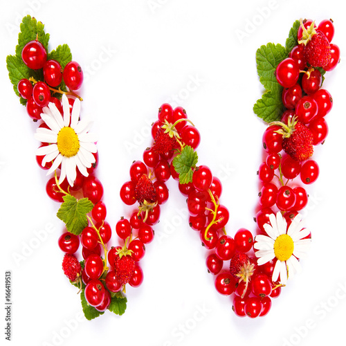 Letter W English alphabet in the form of a pattern of red