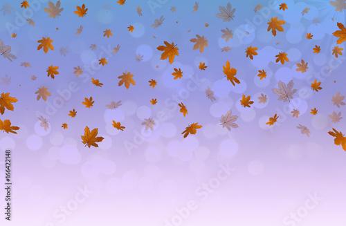 красивая иллюстрация из падающих желтых осенних листьев на светлом фоне Canvas Print