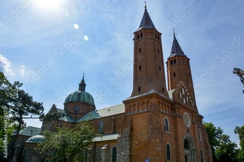 Vászonkép Katedra w Płocku