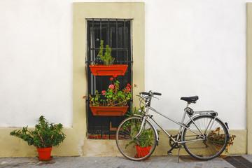 Fototapeta na wymiar Old grey bycicle