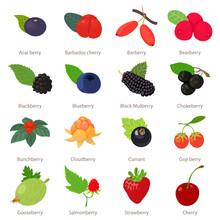 Berries Icons Set, Cartoon Style