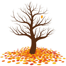 Leafless Tree In Autumn With One Last Single Orange Leaf On It Waiting For To Fall On The More Colorful Pile Of Leaves At The Root Of The Tree. Isolated Vector Illustration On White Background.