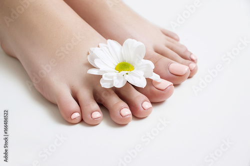 Wall Murals Pedicure Perfect beige pedicure on white background. Female feet with pastel gel polish top view with free space. Result of spa salon procedure