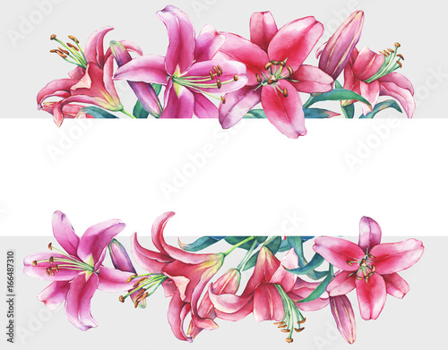 Photo  Banner with a pink lilies, isolated on gray background