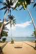 swing under the palmы tree on the sand beach near to the sea.