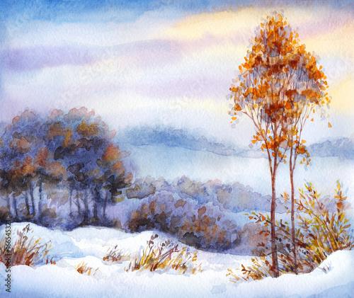 Plakat Akwarela zimowy krajobraz. Ośnieżona dolina i drzewa