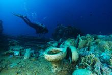 Scuba Diver Explore Yolanda Reef