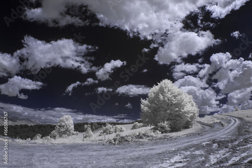In de dag Grijze traf. Infrared photography - mountain landscape and details