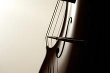 Cello Strings Close-up