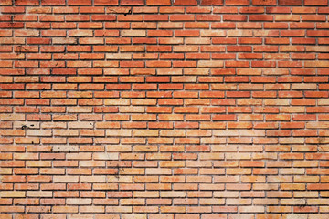 brick wall as a nicely textured background.