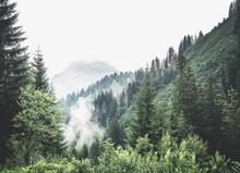Misty, Cloud Filled Winter Valley Landscape