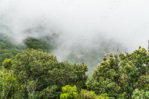 Fotografie, Obraz  Nebel und Wolkenbildug entlang der TF-134 auf Teneriffa