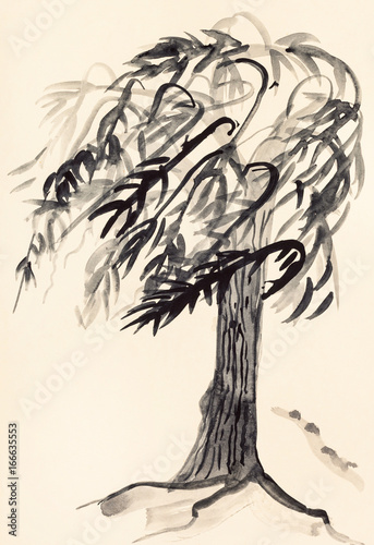Fototapeta sketch of willow tree obraz na płótnie