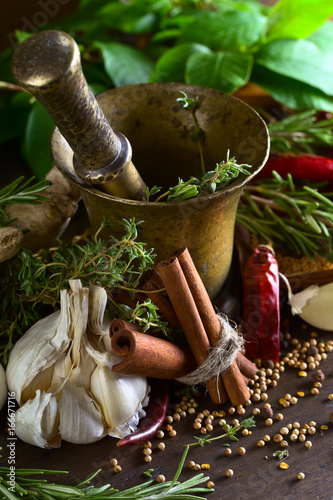 Garlic and different spices . Canvas Print