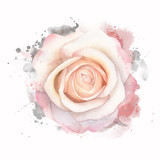 Abstract watercolor rose on white background. Watercolor grunge painting illustration - 166696927