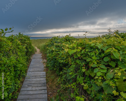 Nantucket ocean beach at sunrise with clouds and seagrass Canvas Print