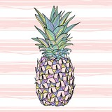 Colorful vector pineapple - 166709300