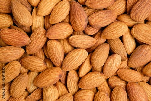 Whole organic almond nuts from top view Canvas Print