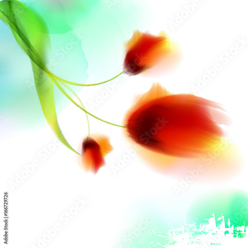 watercolor-romantic-blooming-poppy