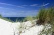 Dünen auf der Nordseeinsel Sylt